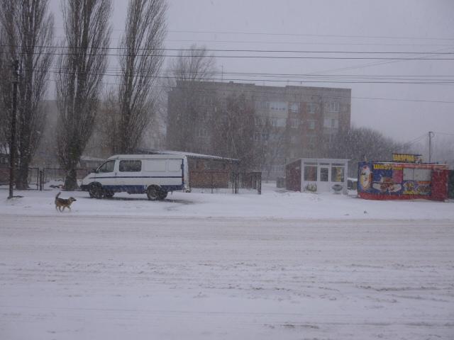 Снегопад в Таганроге