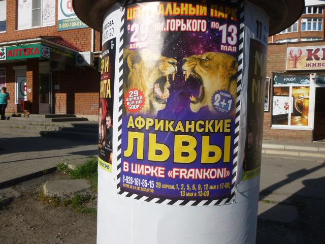 В Таганрог приехал цирк