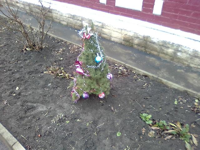Креативная ёлочка перед частным домом в Таганроге
