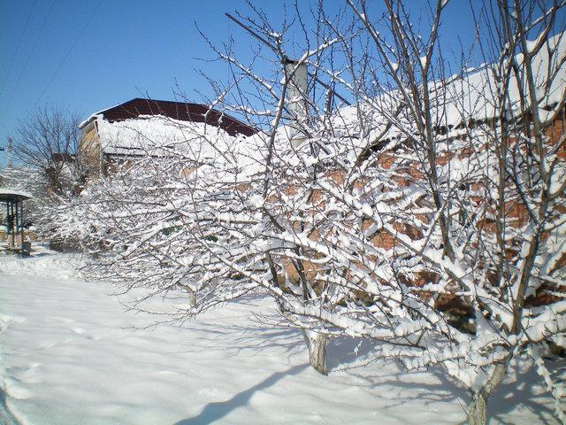 Зима в Таганроге бывает очень снежной
