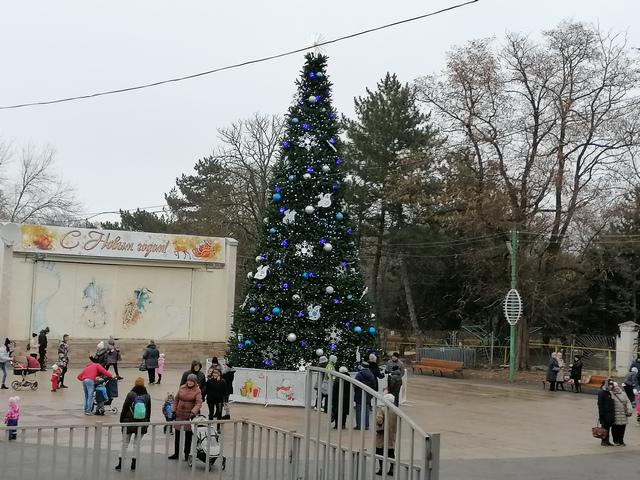 Таганрожцы встретили Новый Год у ёлки в парке Гагарина