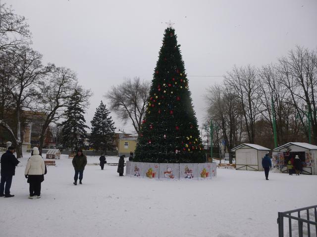 Новогодняя ёлка в Таганроге установленная в парке Горького для празднования Нового Года и Рождества